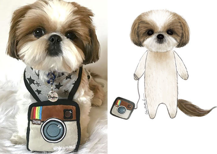 I Draw My Instagram Followers' Pets And Share Their Stories With The World