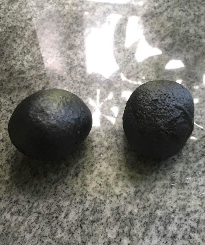 These Are Two Rolls My Friend Forgot About In The Oven For 4 Hours Looking Like Forbidden Avocados