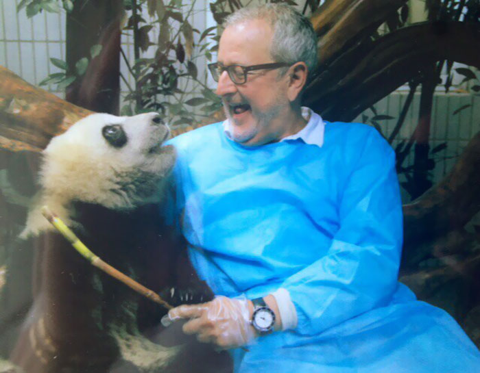 My Dad Passed Away Yesterday. Just Last Week He Was In China Traveling And Met A Panda