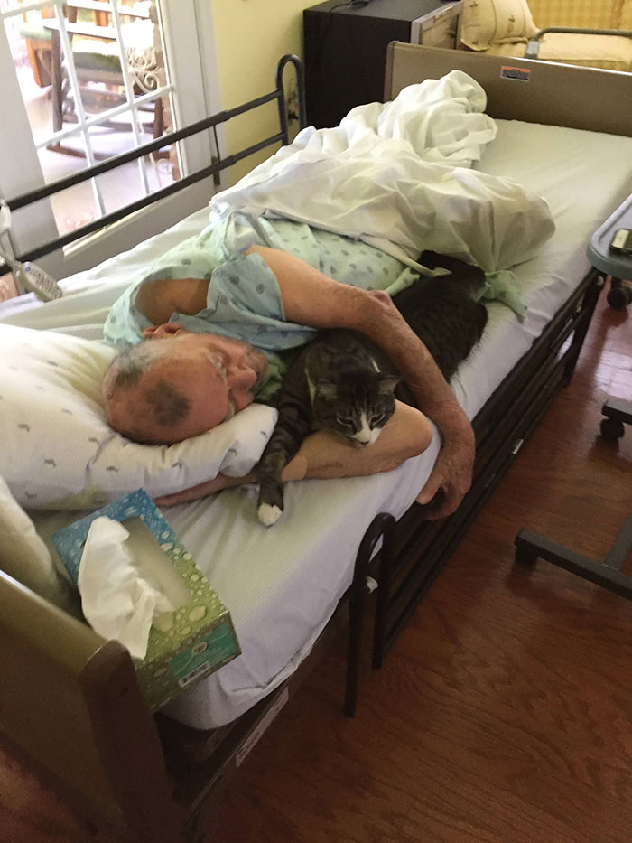 My Dad In Home Hospice Care Last Week With His Cat Brady. Lost His Fight Thursday Afternoon