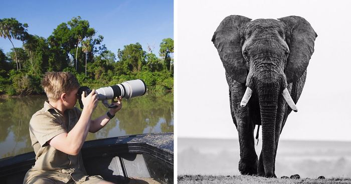 Steve Irwin's 14-Year-Old Son Continues His Father's Legacy With Award-Winning Wildlife Photography
