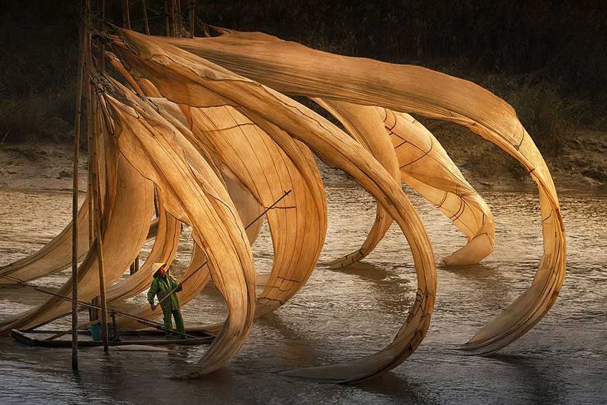 Flying Fishing Nest, China (3rd Place In General Color Category)