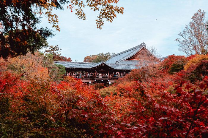 I Visited Kyoto In Japan And It Was Of The Best Weekends For Photography I've Had In A While