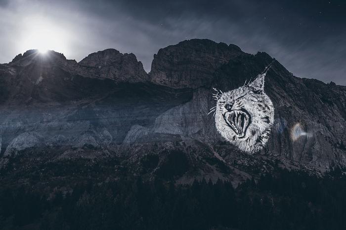 The Full Moon Lynx
