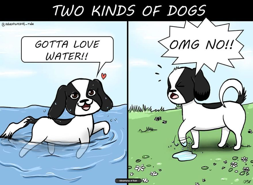 12 Comics That Every Dog Owners Will Understand