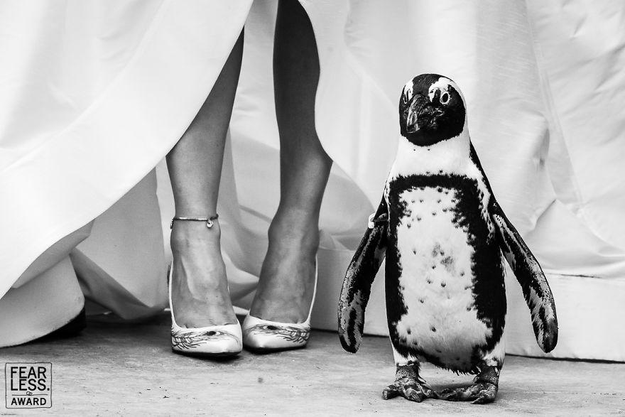 Best-Wedding-Photos-2018-Fearless-Awards-Photography