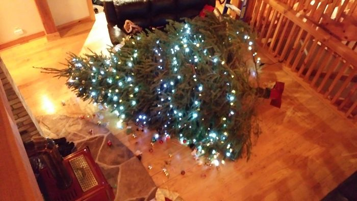 10 Foot Tall Christmas Tree Fell Over Today...