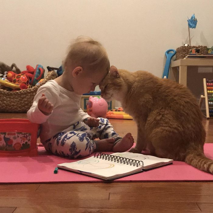My 1.5yr Old Son And 14yr Old Cat Had A Moment This Morning