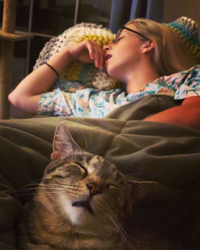 My Fiancé And Our Cat, Catching Flies