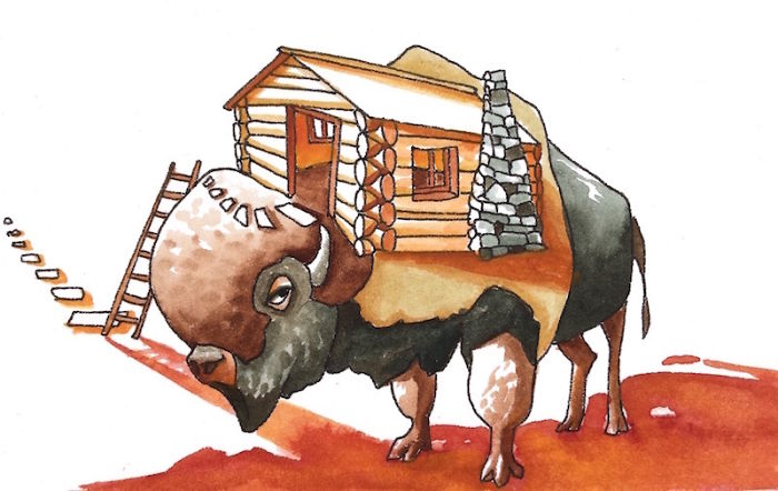 Bison House