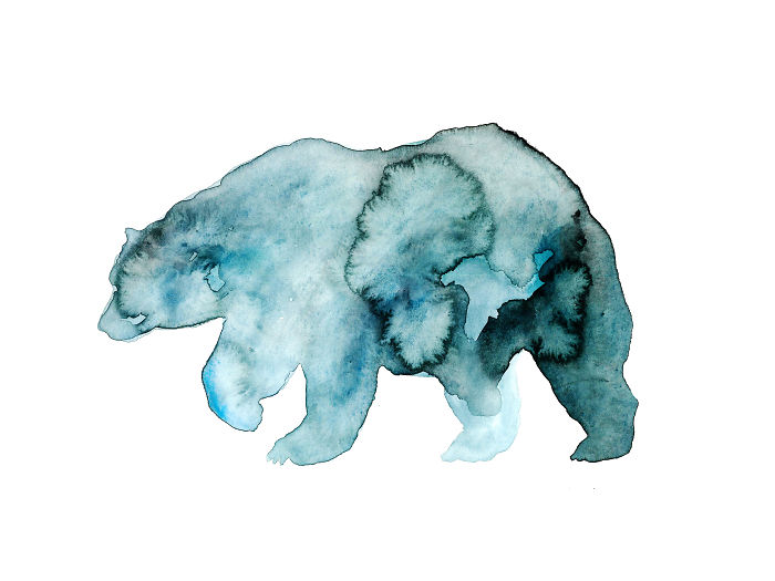An Abstract Grizzly