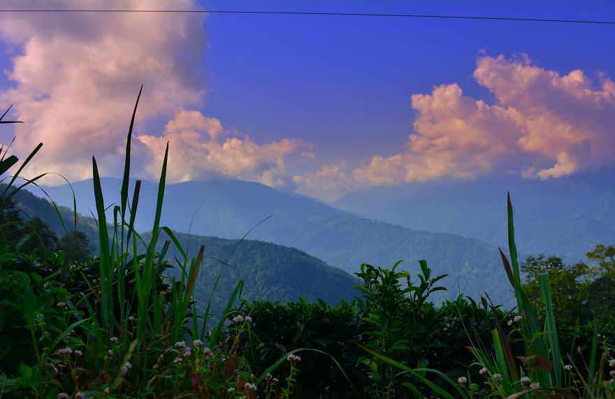 Nature Photography From Darjeeling, West Bengal, And India (24 Pics)