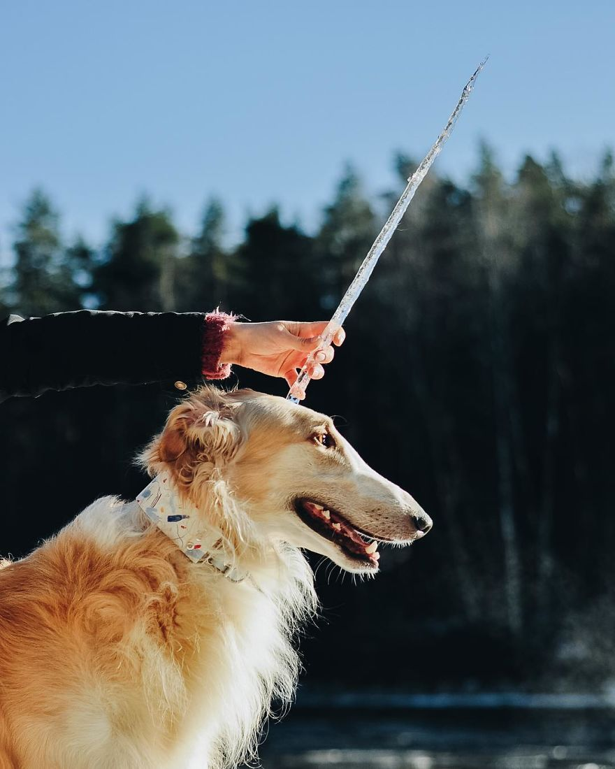 Sighthound Squad Photographic Journey Across Lithuania