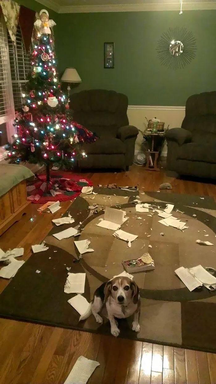 I Ummmm... Uhhhhh... Merry Christmas!