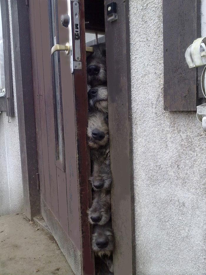 Our Anti-Burglar System