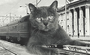 I Created Collages Of Huge Cats Celebrating The New Year In The USSR