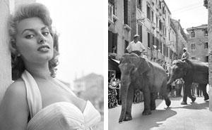 26 seltene Fotos von Ikonen der 50er und 60er Jahre in Venedig