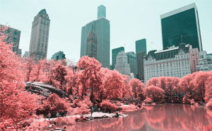 Paolo Pettigiani Uses Infrared Photography To Give Us A Different View Of The World