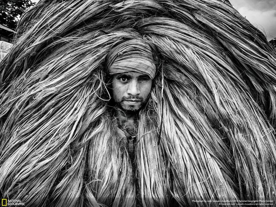 Jute Worker, Zakir Hossain Chowdhury