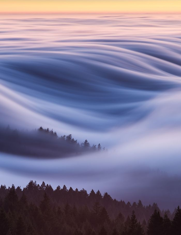 People's Choice, Places: Cotton Candy, Fog Waves, David Odisho