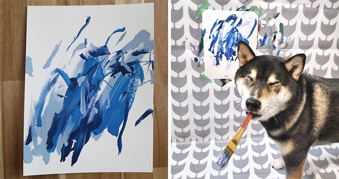 Owners Teach Their Shiba Inu To Paint, Sell Paintings Worth ~$5000