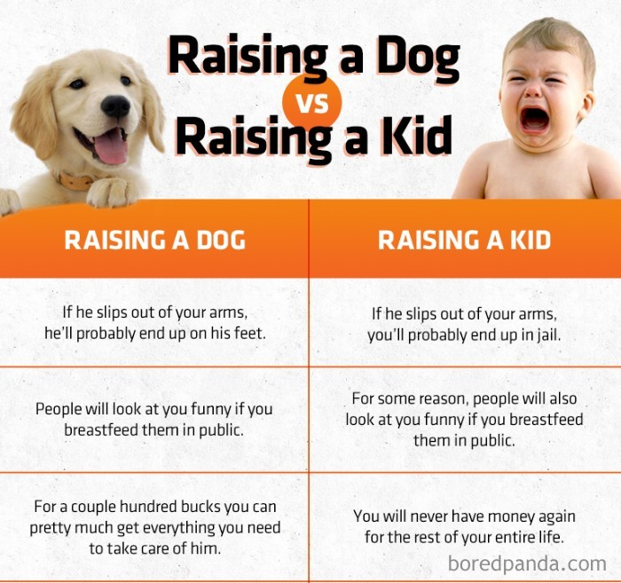 having a dog is like having a child