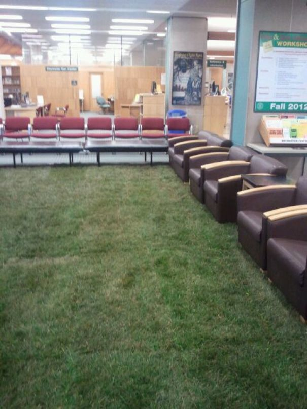 Campus Library Installs Grass. Real Grass