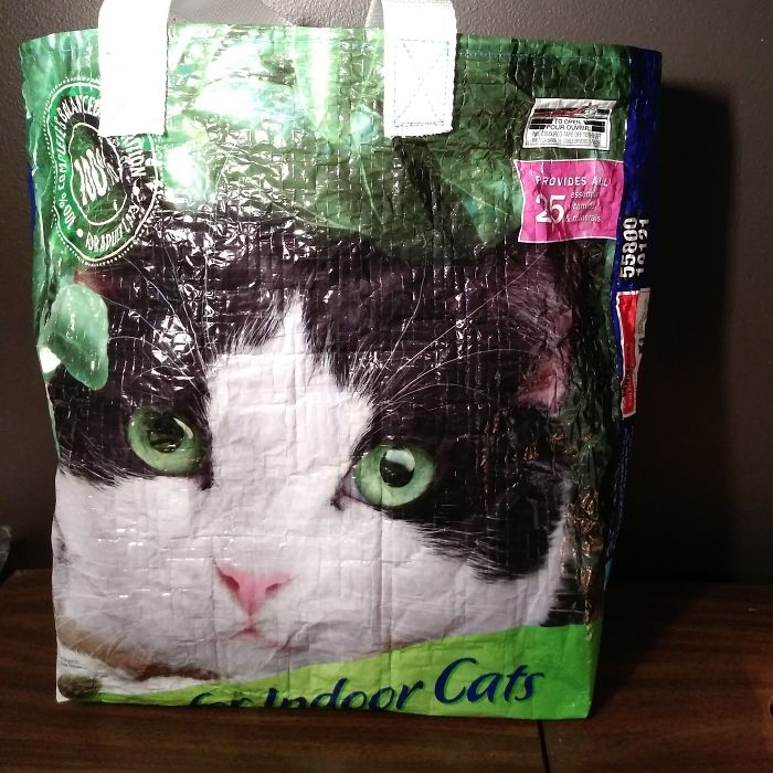 Cat Food Bag + Leftover Bag Handles From A Workshop = Reusable Grocery Bag With A Giant Cat Face On It