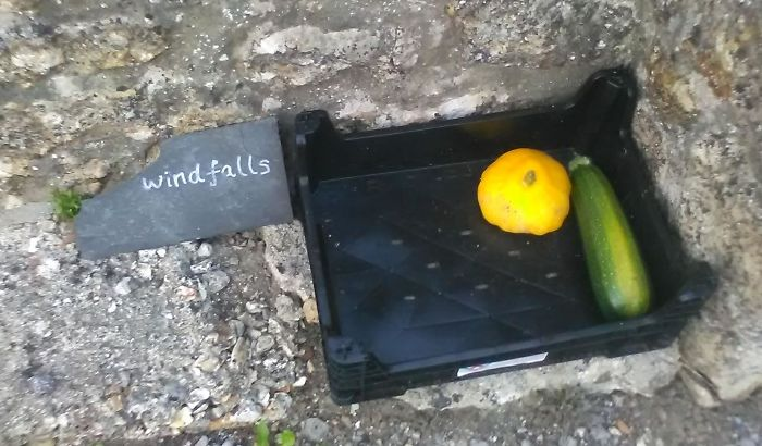 Local Custom: Around Here People Put Out Spare Veg From Their Garden For Anyone To Help Themselves
