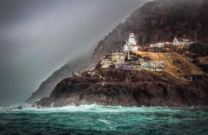 Newfoundland, My Home