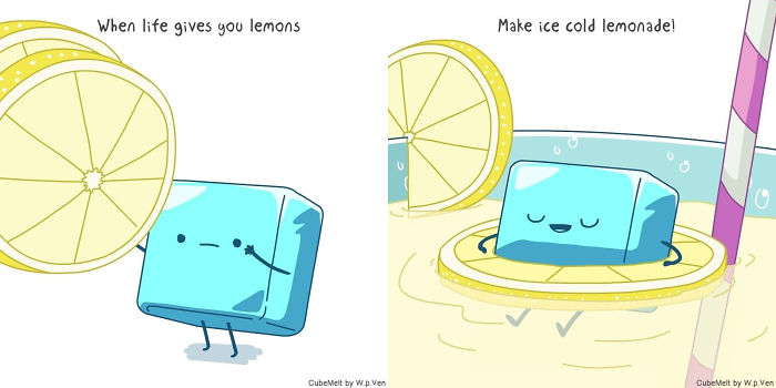 What Would You Do With Your Lemons?