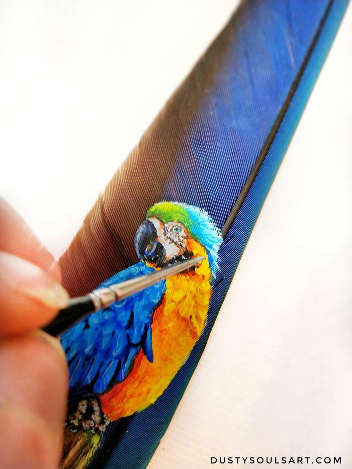 Macaw On Macaw