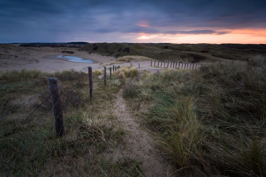 The Sunrise On The Dunes Of The Kennemerland National Park