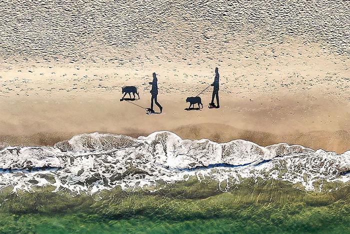 3º premio. 2 perros, 2 personas y 4 sombras, por Qliebin