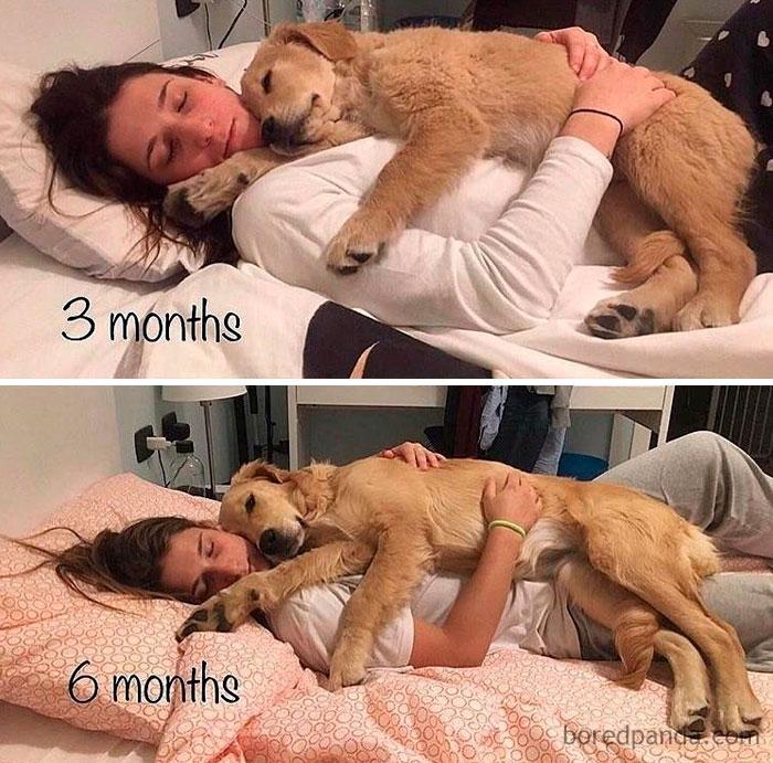 3 meses y 6 meses