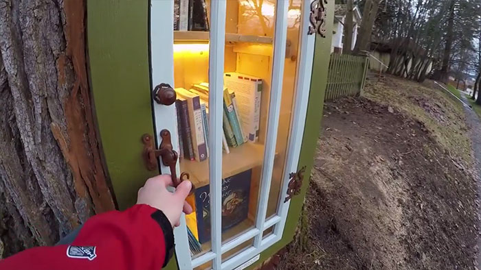 Kobieta zamieniła pień 110-letniego drzewa w darmową biblioteką. Jej sąsiedzi byli zachwyceni