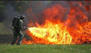 flames-5c3266a353ed1.jpg