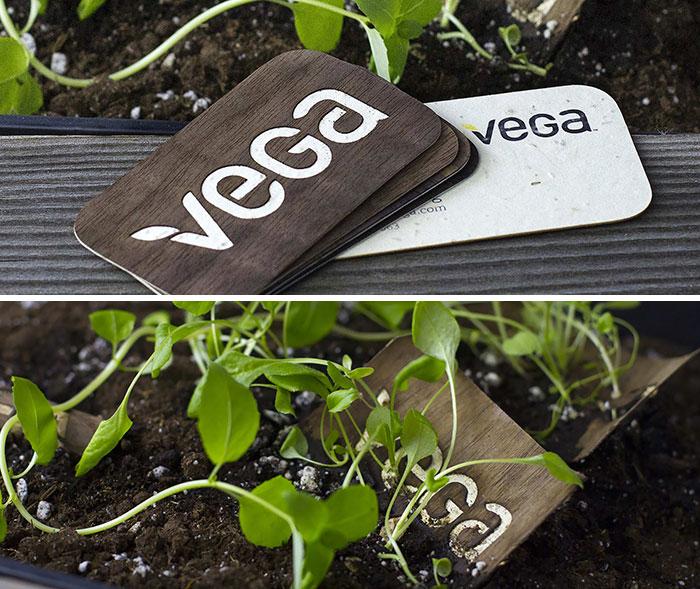 Vega Seeded Business Cards