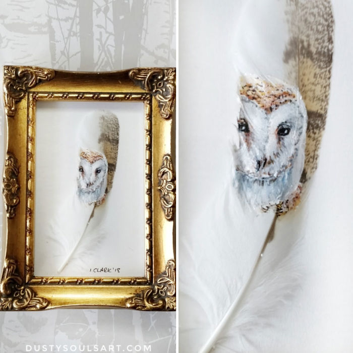 Barn Owl On Barn Owl