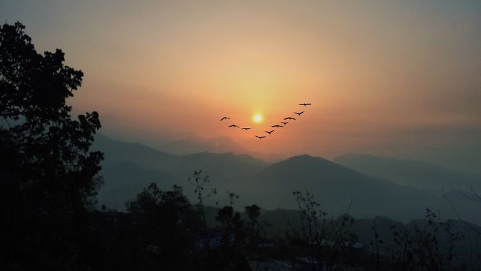 The Treks You Can Go From Your Favorite City Pokhara