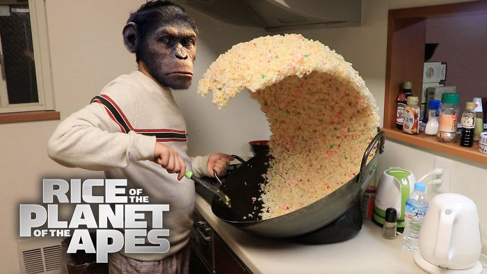 Rice Of The Planet Of The Apes