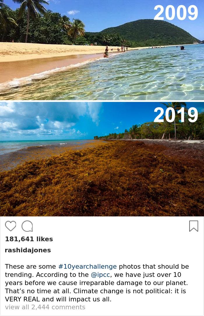 Sad-10-Year-Challenge-Nature-Memes