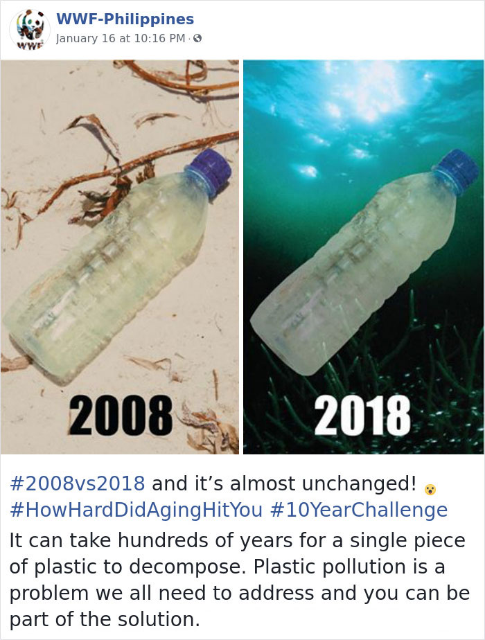Sad-10-Year-Challenge-Nature-Memes