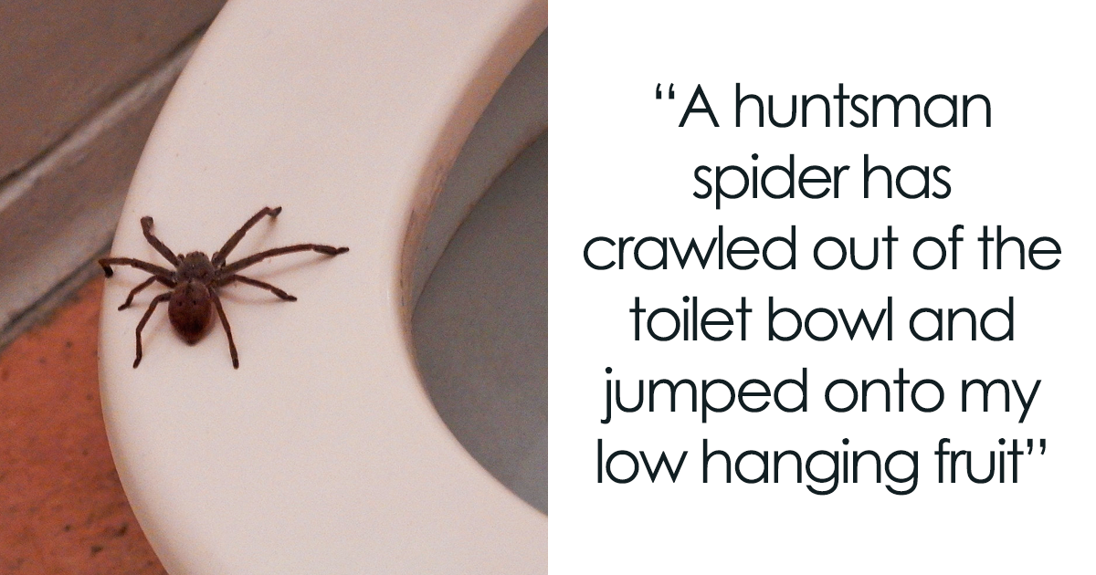 Man Shares A Hilariously Horrifying Story About Getting 'Sexually Harassed' By A Spider At Work