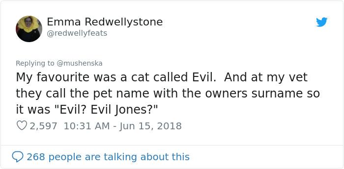 Funny-Pet-Names
