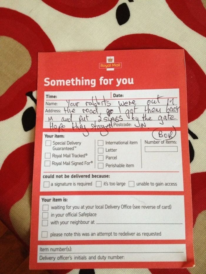 The Postman Saved Our Rabbits, Alice And Lilith, From Our Busy Road Then Left Us A Note