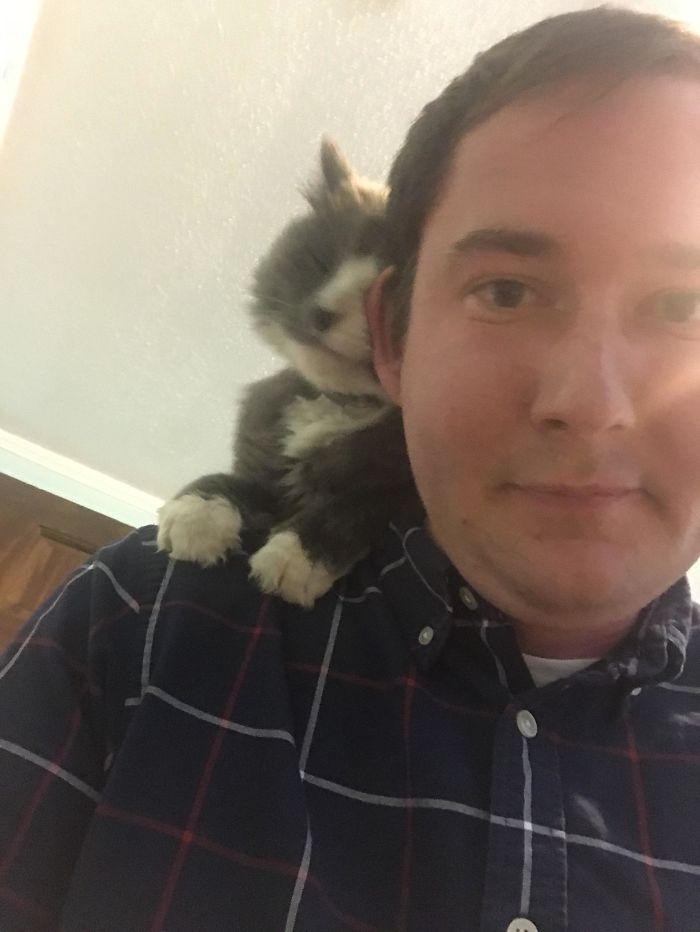 I Made A Friend Named Mewcifer At My Airbnb