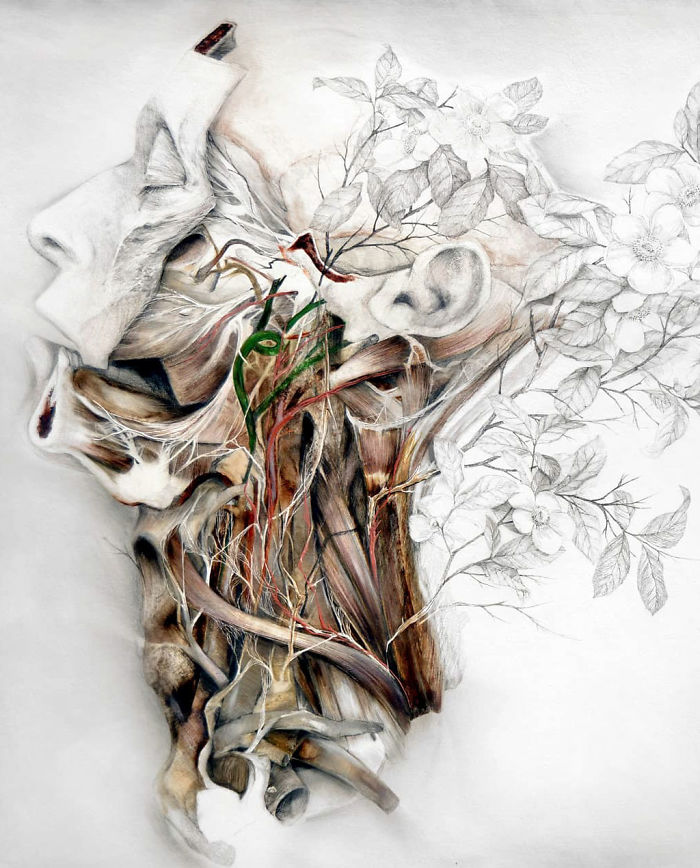 Artist Makes Flowers Bloom From Animal Bodies And The Result Is Beautiful