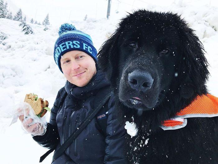 Le he puesto un chaleco de seguridad porque la gente se creía que era un oso