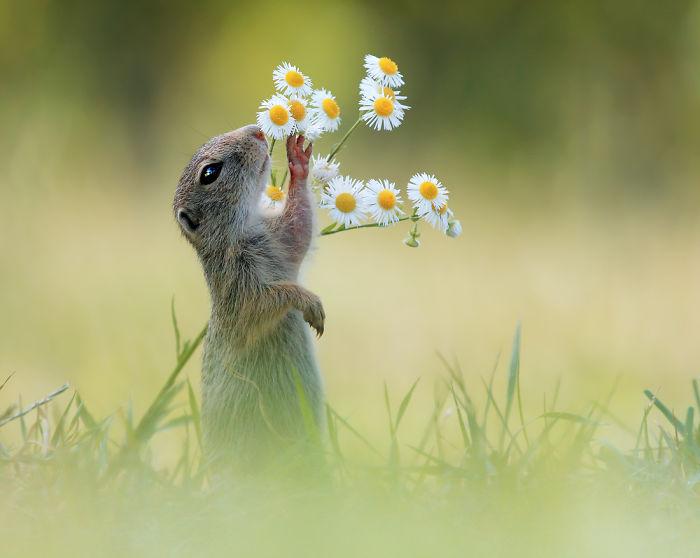 Hay que oler las flores